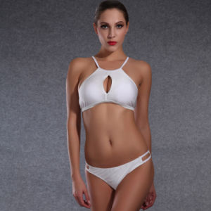 OEM Newest Swimwear with High Quality pictures & photos