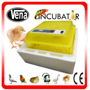 CE Marked Industrial Automatic Chicken Incubator for Sale pictures & photos