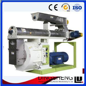 Selling Animal Feed Pellet Production Line From Dingsheng Machine pictures & photos