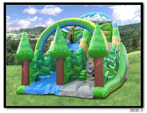 Inflatable Slide pictures & photos