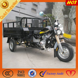 Bajaj Three Wheeler Price for Cargo pictures & photos