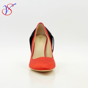 Sex Women High Heel Dress Shoes for Party Sv-Wf 004 pictures & photos