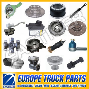 Over 500 Items Truck Parts for Scania 113 Parts pictures & photos