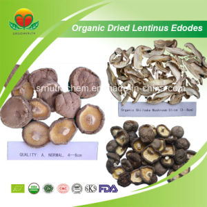 Manufacturer Supply Organic Dried Shiitake pictures & photos