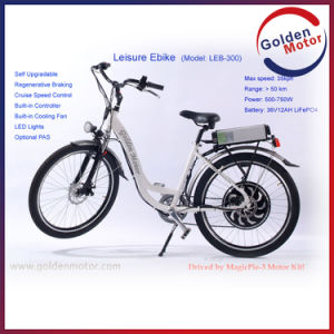 Breed Female Electric Bicycles (LEB400) pictures & photos