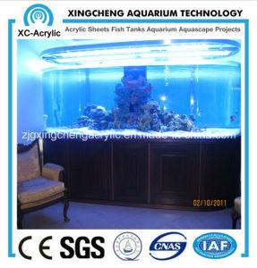 The Acrylic Aquarium of Modern Design pictures & photos