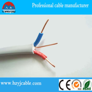 Twin and Earth Flat Cable Manufacturer/Supplier/Exporter pictures & photos