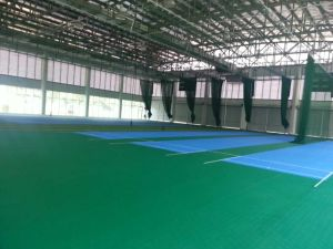 Maunsell International High Quality PVC Flooring for Cricket Court Indoor /Outdoor in Roll pictures & photos