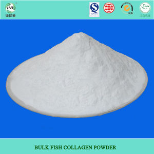 Edible Granulated Instantized Fish Collagen