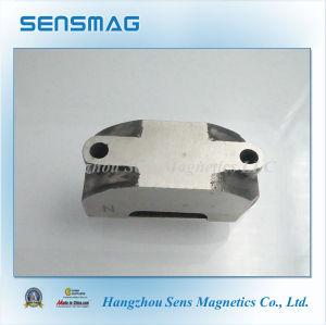 Manufacture Permanent AlNiCo Horseshoe Motor Magnet pictures & photos