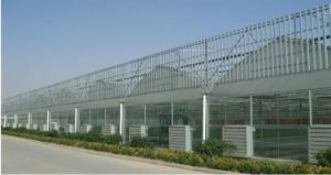 Galvanized Frame Greenhouse for Sale pictures & photos
