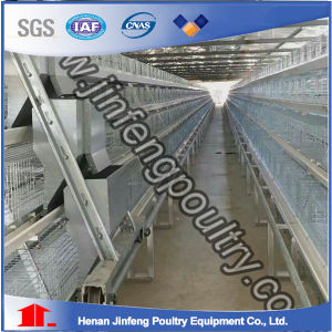 Hot Quality Chicken Cage for Sale Price pictures & photos
