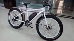 New 250W 36V MTB Hummer Electric Bicycle pictures & photos