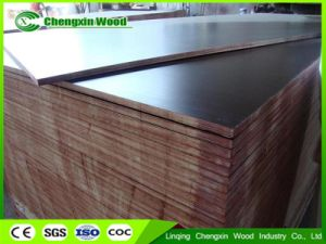 Hardwood Core Film Faced Shuttering Plywood pictures & photos