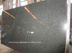 Tunis Green/Cactus Green Granite Slab for Countertop Tile (YY-VCDG) pictures & photos