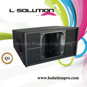 D&B Q1 Style Professional Line Array System
