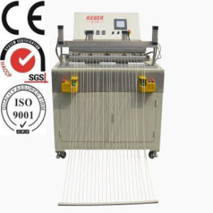 SGS CE ISO9001 Capillary Hot Plate Welding Machine (KEB-6020) pictures & photos