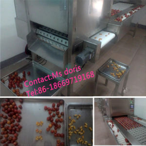 Hot Sale Automatic Fruit Pitting Machine/Date Pitting Machine pictures & photos