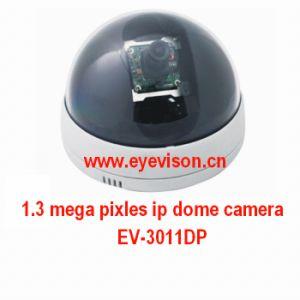 1.3 Mega Pixles IP Camera (EV-3011DP) pictures & photos