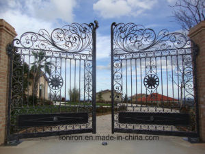 Hand-Crafted Decorative Wrought Iron Double Swing Gates for Villa pictures & photos