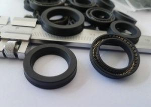Teflon St100 Seal, Teflon St100 Oil Seal, PTFE St100 Seal, PTFE St100 Oil Seal Made with PTFE Carbon and SS304 Skeleton pictures & photos