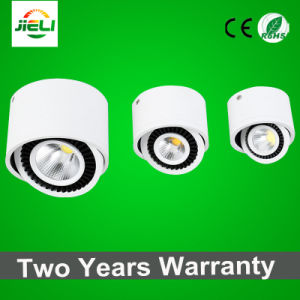 360 Degree Rotable Surface Mounted 3W COB LED Downlight pictures & photos