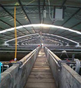 Fish Farm /Shrimp Farm Oxygen Generator /Oxygen Concentrator pictures & photos
