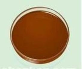 Hot Sale Natural Tongkat Ali Extract on Sell pictures & photos