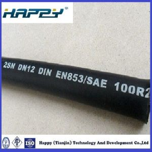 Hydraulic Hose Type SAE 100r2at/ En853 2sn pictures & photos