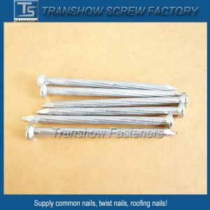 2.9mm Twisted Shank Concrete Nails pictures & photos