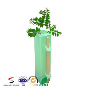 Plastic Tree Guard PP Plants Protection pictures & photos