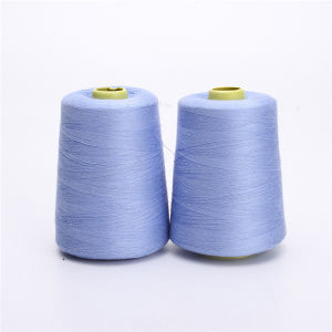 100% Spun Polyester Sewing Thread 40/2 pictures & photos