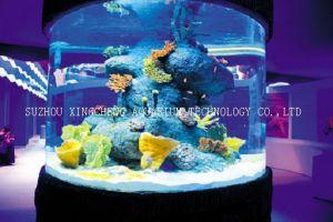 Cylindrical Acrylic Aquarium/Cylindrical Tank/Clear for Life Acrylic Aquarium pictures & photos