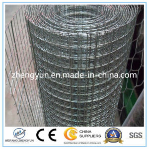 Made in China Galvanized Welded Wire Mesh pictures & photos