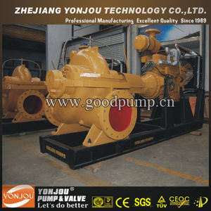Diesel Engine Pump, Diesel Pump, Diesel Water Pump pictures & photos