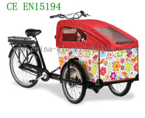2017 New Family Cargo Bikes (DT-013) pictures & photos