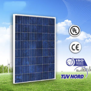 220W Poly Solar Power Panel (We provide long-term spot) pictures & photos