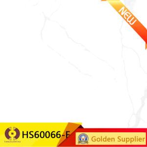 Building Material 600X600 Rustic Porcelain Flooring Tile (HS60066) pictures & photos