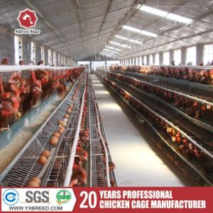 3-4 Tiers Battery Chicken Egg Layer Cage pictures & photos