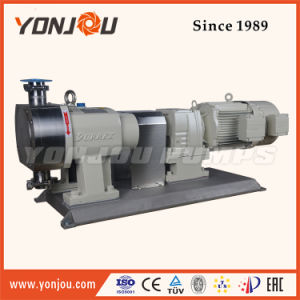 Stainless Steel Rotor Pump, Rotor Pump, Pump for High Viscosity Liquid pictures & photos