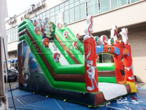 Lilytoys Factory Price PVC Typ Cheap Giant Inflatable Slide for Sale pictures & photos
