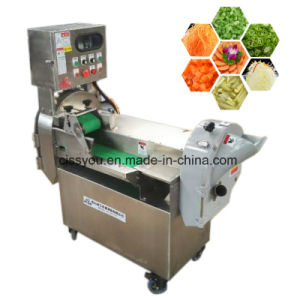 China Multi Root Vegetable Fruit Slicer Strip Cutter Chopper Machine pictures & photos