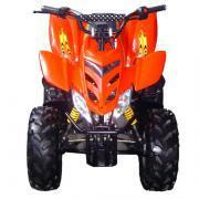 110 CC ATV