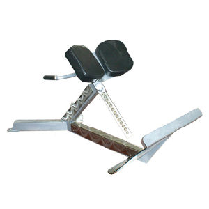 Freemotion Gym Equipment 45 Degree Back Extension (SZ28) pictures & photos