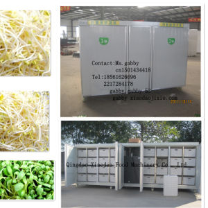 Bean Grass Growing Machine /Wheat Growing Machine /Barley Sprout Machine pictures & photos