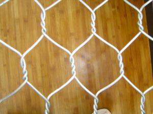 1X100m Chicken Wire Mesh