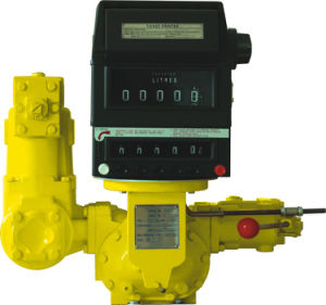 Positive Displacement Flow Meter pictures & photos