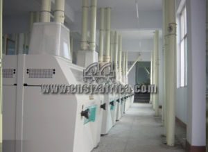 High Quality Maize Grain Flour Mill pictures & photos