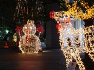 Holiday Light Motif LED Rope pictures & photos