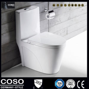 Washlet /Toilet with Double Hole Vortex Type Siphon pictures & photos
